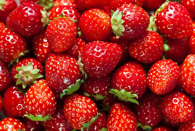 The Institute of Democracy supports production of ecologically-friendly strawberry